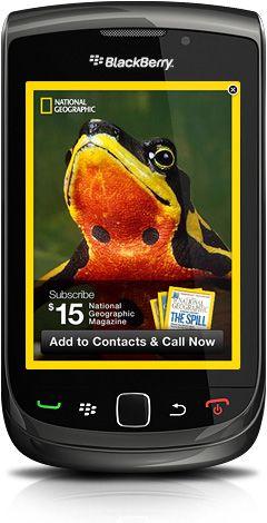 Blackberry Advertising Service