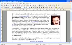 PDF OpenOffice 1