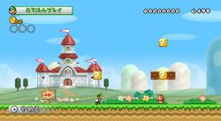 New Super Mario Bros Wii (14)