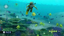 endless-ocean-2 (9)