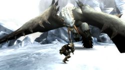 Monster Hunter 3 - 2