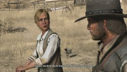 Red Dead Redemption (13)
