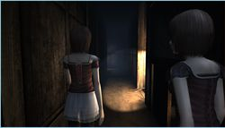 Project Zero II Wii (2)