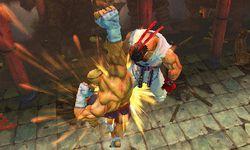 Super Street Fighter IV 3D Edition (15)