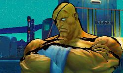 Super Street Fighter IV 3D Edition (18)