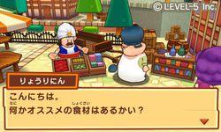 Fantasy Life 3DS (4)
