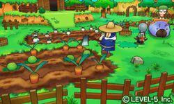 Fantasy Life 3DS (6)