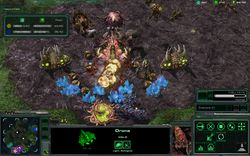Starcraft II Wings Of Liberty - Image 5