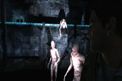 Silent Hill Shattered Memories - Wii (4)