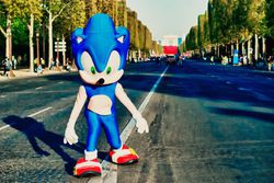 Sonic 20 ans - Marathon de Paris 2011 (1)