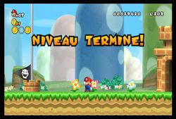 New Super Mario Bros Wii (9)