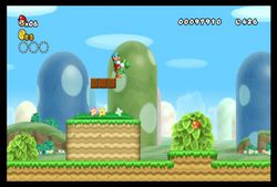 New Super Mario Bros Wii (18)