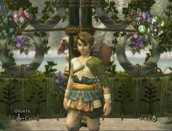 Zelda Twilight Princess GameCube -img1