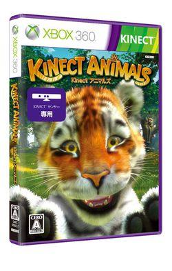 Kinect Animals (3)
