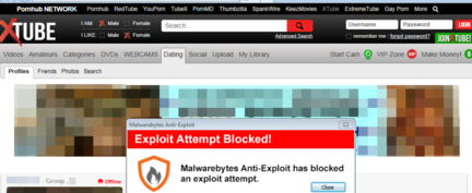 Malwarebytes-XTube