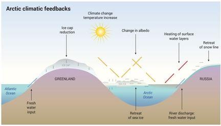 Arctique climat rechauffement