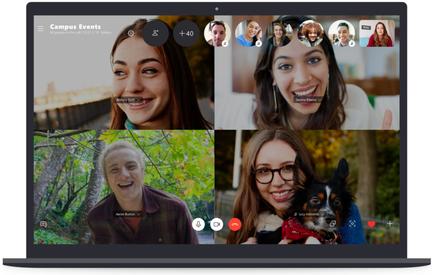 Group Skype Call