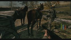 Call of Juarez Bound in Blood (11)
