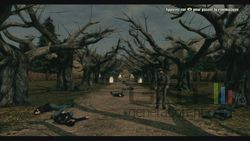Call of Juarez Bound in Blood (18)