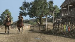 Red Dead Redemption (12)