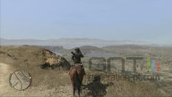 Red Dead Redemption (14)