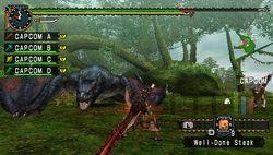 test monster hunter freedom unite psp image (2)