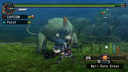 test monster hunter freedom unite psp image (5)