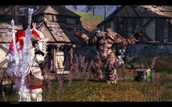 Dragon Age Origins - Image 103