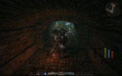Gothic 4 Arcania - Image 33