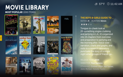 4-Boxee_Movie_Library