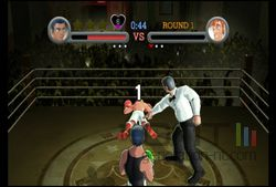 Punch Out (10)