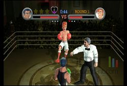 Punch Out (11)