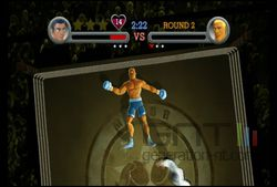 Punch Out (23)