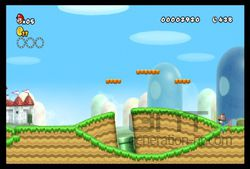 New Super Mario Bros Wii (7)