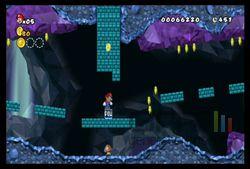 New Super Mario Bros Wii (10)