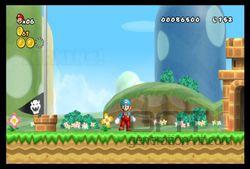 New Super Mario Bros Wii (13)