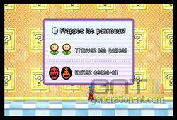 New Super Mario Bros Wii (16)