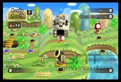 New Super Mario Bros Wii (20)