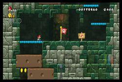 New Super Mario Bros Wii (21)