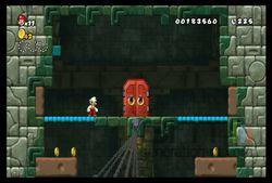 New Super Mario Bros Wii (22)