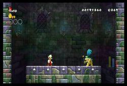 New Super Mario Bros Wii (23)
