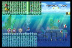 New Super Mario Bros Wii (24)