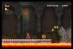 New Super Mario Bros Wii (25)