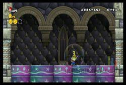 New Super Mario Bros Wii (27)