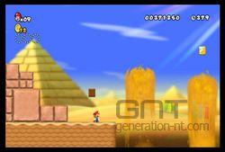New Super Mario Bros Wii (29)