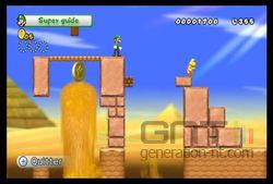 New Super Mario Bros Wii (33)