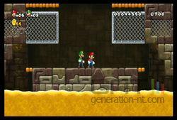 New Super Mario Bros Wii (35)