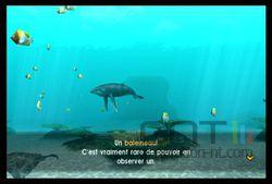 Endless Ocean 2 (20)