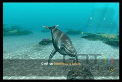Endless Ocean 2 (21)