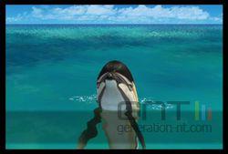 Endless Ocean 2 (35)